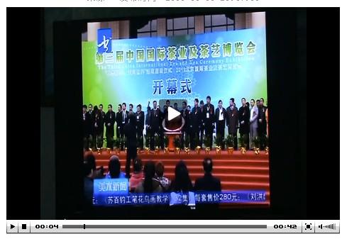 4月21日数字电视书画频道对茶博会的报道