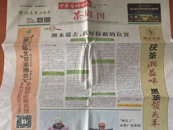 茶周刊广告